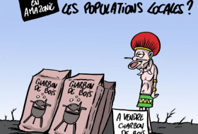 Incendies en Amazonie -   CARICATURE